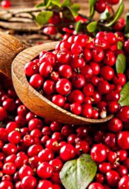 Crema Balsamica Cranberry