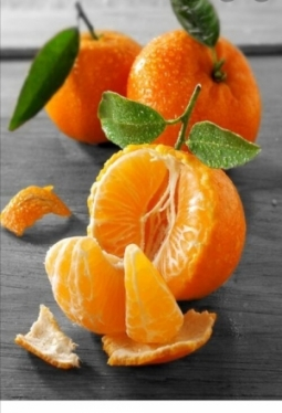 Konfitüre Mandarinen 85%