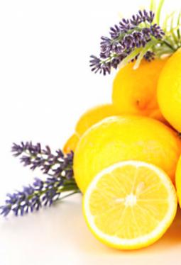 Crema Balsamica Zitrone & Lavendel
